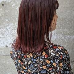 赤茶 ストレート ナチュラル チェリーピンク ヘアスタイルや髪型の写真・画像