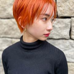 ハンサムショート ナチュラル ショートヘア ダブルカラー ヘアスタイルや髪型の写真・画像