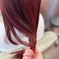イルミナカラー 韓国ヘア ガーリー チェリーレッド ヘアスタイルや髪型の写真・画像