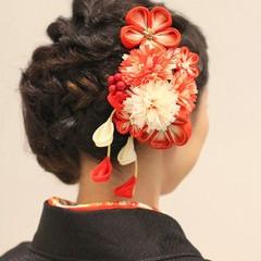 ヘアアレンジ 成人式 暗髪 大人女子 ヘアスタイルや髪型の写真・画像