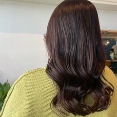 ピンクブラウン ショコラブラウン セミロング 韓国風ヘアー ヘアスタイルや髪型の写真・画像