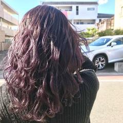 ウルフカット バイオレットカラー バイオレットアッシュ アンニュイほつれヘア ヘアスタイルや髪型の写真・画像