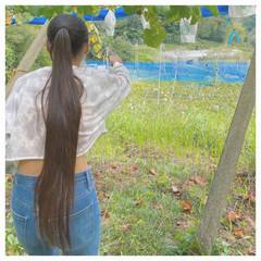 モード ストレート ロング ヴィーナスコレクション ヘアスタイルや髪型の写真・画像