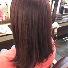 ベリーピンク ナチュラル ピンク ラベンダーピンク ヘアスタイルや髪型の写真・画像