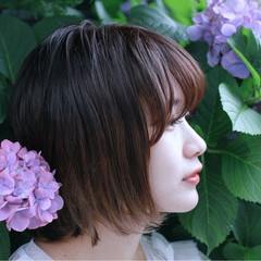 ピュア ボブ ワンカール ナチュラル ヘアスタイルや髪型の写真・画像