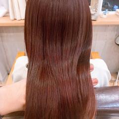 ベリーショート ナチュラル ショートヘア 切りっぱなしボブ ヘアスタイルや髪型の写真・画像