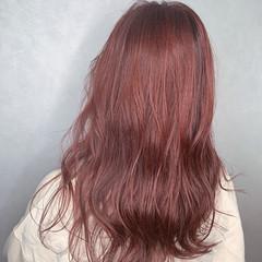セミロング レッドブラウン チェリーレッド カシスレッド ヘアスタイルや髪型の写真・画像