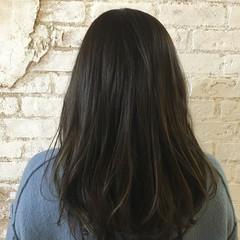ナチュラル ハイライト セミロング 黒髪 ヘアスタイルや髪型の写真・画像