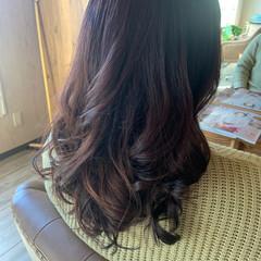エレガント 髪質改善トリートメント 巻き髪 髪質改善カラー ヘアスタイルや髪型の写真・画像