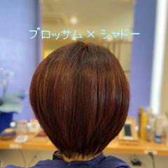 透明感 圧倒的透明感 ショートボブ ミニボブ ヘアスタイルや髪型の写真・画像