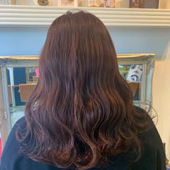 ラベンダーカラー ラベンダーピンク ラベンダーアッシュ セミロング ヘアスタイルや髪型の写真・画像