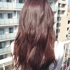 ピンク ストレート ベリーピンク パープル ヘアスタイルや髪型の写真・画像