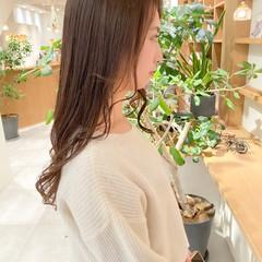 セミロング ミルクティーグレージュ 透明感カラー グレージュ ヘアスタイルや髪型の写真・画像