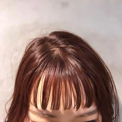 ピンクブラウン ぱっつん セミロング フェミニン ヘアスタイルや髪型の写真・画像