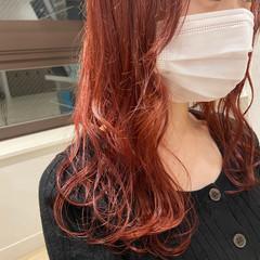 レッドカラー ミディアム カシスレッド フェミニン ヘアスタイルや髪型の写真・画像