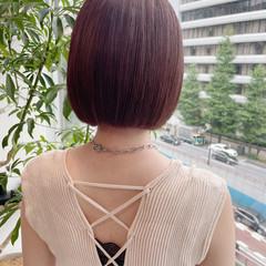 韓国 ラズベリーピンク 韓国風ヘアー ミニボブ ヘアスタイルや髪型の写真・画像