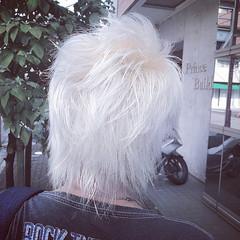 ホワイト ウルフカット ホワイトブリーチ ネオウルフ ヘアスタイルや髪型の写真・画像