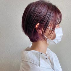 ピンク ショートヘア ハイライト ショート ヘアスタイルや髪型の写真・画像