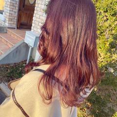 ラベンダーピンク ガーリー ピンクアッシュ ロング ヘアスタイルや髪型の写真・画像