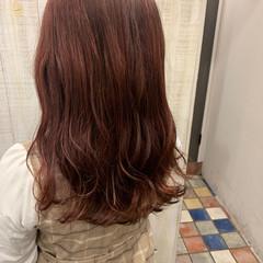 ガーリー レッドブラウン レッドカラー セミロング ヘアスタイルや髪型の写真・画像