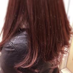 大人女子 パープル アッシュ セミロング ヘアスタイルや髪型の写真・画像