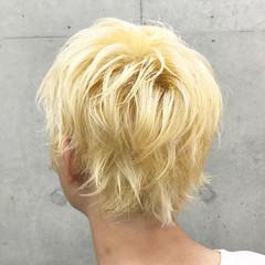 ハイトーンカラー ショートヘア ナチュラル ショートレイヤー ヘアスタイルや髪型の写真・画像