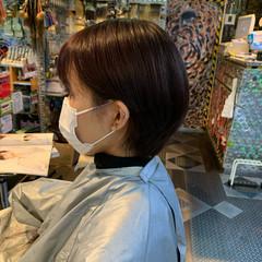 ベリー ショートボブ ベリーショート ショートヘア ヘアスタイルや髪型の写真・画像