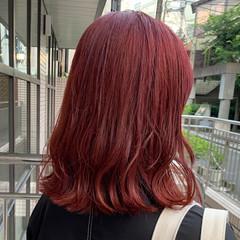 ナチュラル カシスレッド レッドブラウン レッド ヘアスタイルや髪型の写真・画像
