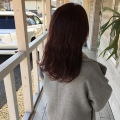 ピンクベージュ ピンクカラー ピンクパープル ブリーチなし ヘアスタイルや髪型の写真・画像