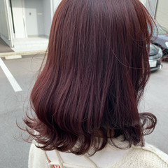 エレガント カシスカラー チェリーピンク 可愛い ヘアスタイルや髪型の写真・画像