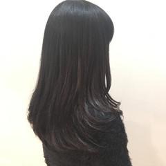 黒髪 セミロング ナチュラル グラデーションカラー ヘアスタイルや髪型の写真・画像