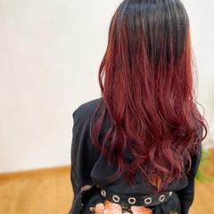 ブリーチカラー ボルドーヘア 赤髪 ロング ヘアスタイルや髪型の写真・画像