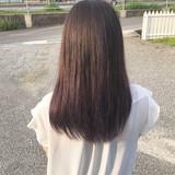 パープルカラー グラデーションカラー ハイライト ラベンダーグレージュ ヘアスタイルや髪型の写真・画像   MOMOKO / HairworksZEAL
